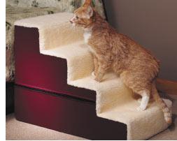 gatos idosos têm muita dificuldade de subir em lugares mais altos, como camas e sofás. Ajude-o colocando uma escadinha como a da foto.