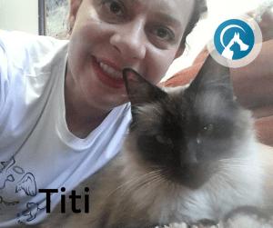 O seu gato precisa ficar no seu ambiente familiar para se sentir seguro quando estiver sem o seu tutor!