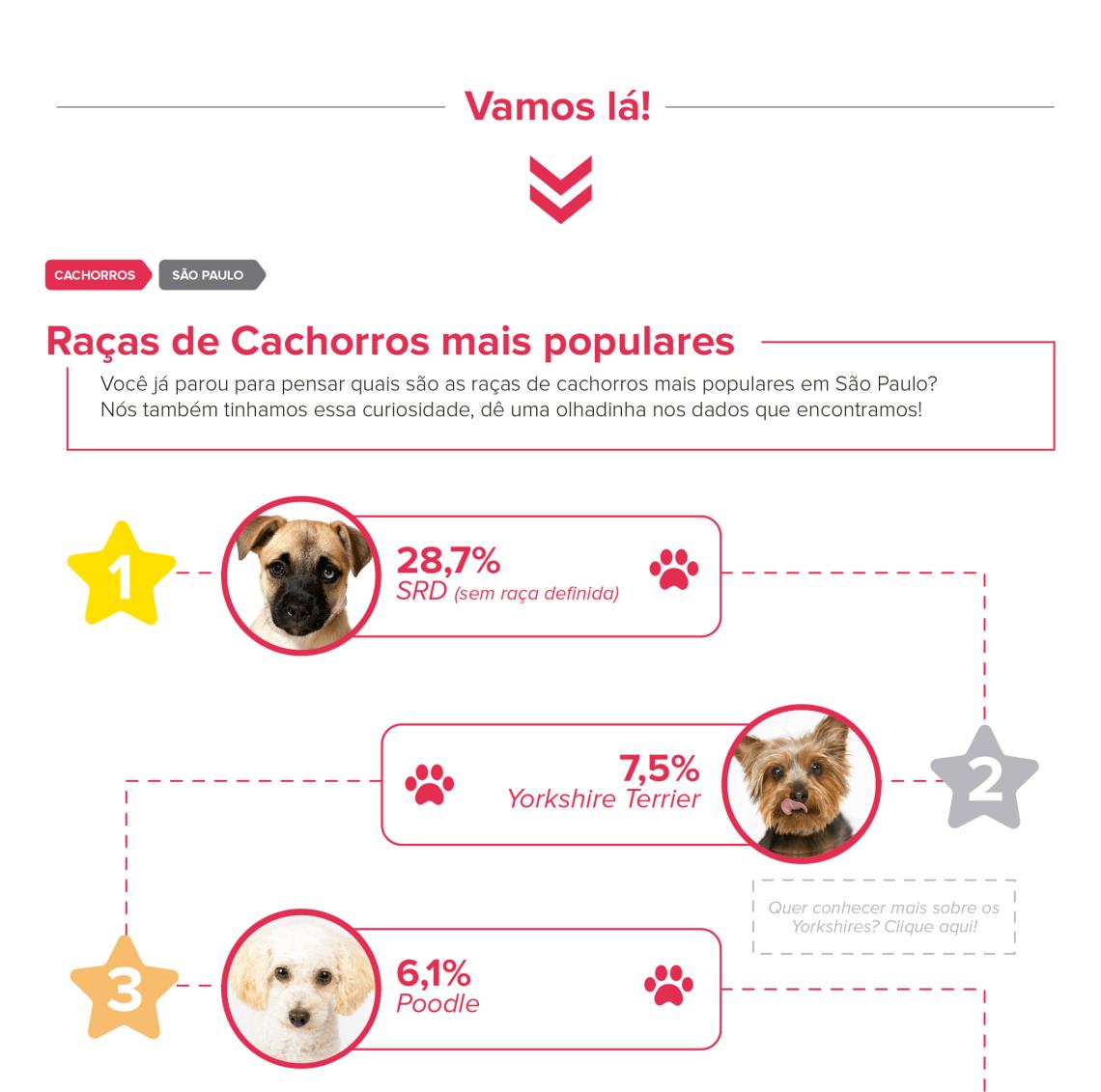 quais são as raças de cachorro mais populares