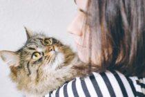 pet sitter cuidando de gato em seu colo