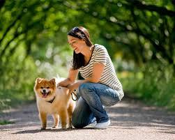 passeador de cães o que tem no kit de um dog walker