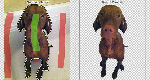 Clipping Magic Helps You Easily Remove Picture Backgrounds clipping magic demo dog