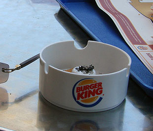 Thou Shalt Not Steal: Theres a Plagiarism Epidemic in the Photography Industry burgerking