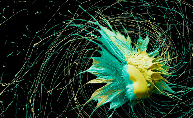 Colorful Photos of Paint Being Flung from Barbie Heads and Various Objects spin 8