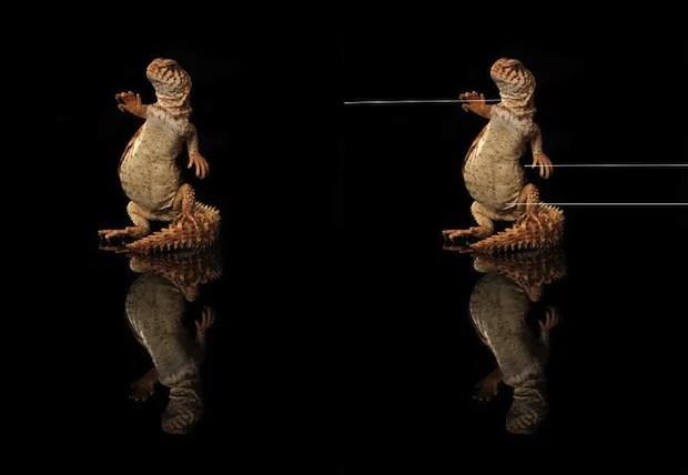 Photo Analysis Accuses Some Photogs of Faking Cute Animal Photos in Cruel Ways cruelfakes3