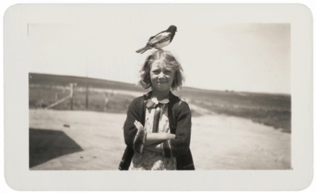 Photo Collector Robert E. Jackson on the Death of the Snapshot robertjackson1