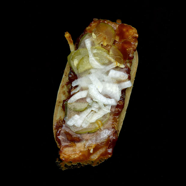 Pictures of Fast Food, Captured Using a Flatbed Scanner scannedfastfoods 4
