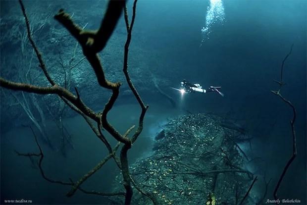 Mesmerizing Photos of Cenote Angelita, an Underwater River underwaterriver4