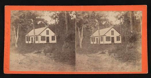 Rockville Plantation no. 6.