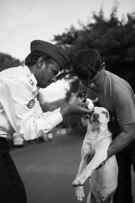 A traffic policeman is helping Arun put powder on a dog's wound.