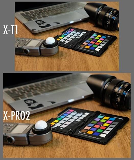 xtxpro mp test
