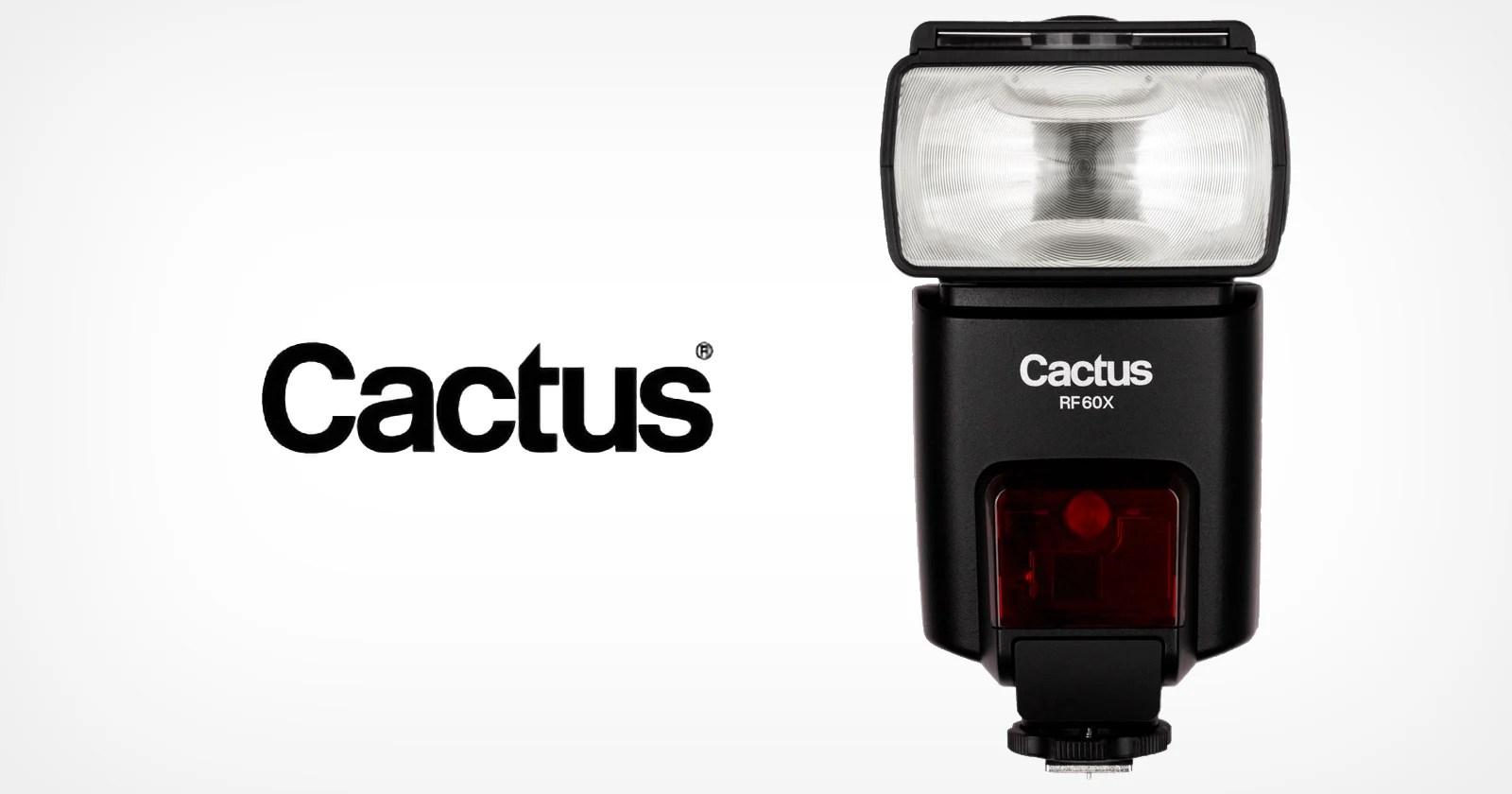 Il produttore di apparecchiature per illuminazione Cactus ha cessato le attività