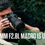 Ecco come funziona l'anello di controllo macro bokeh Canon RF100mm