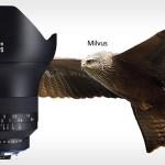 Le famiglie di lenti Zeiss prendono il nome dagli uccelli