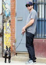 Jake Gyllenhaal boston terrier