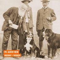 cachorro bernese e sua historia