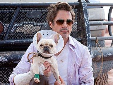 filme bulldog frances