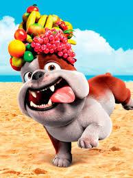 Bulldog ingles filme RIO