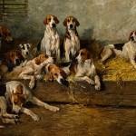 foxhound americano quadros