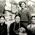 lhasa historia tudo sobre