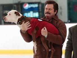 o ator Nick Offerman com seu pitbull