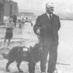 cachorro terra nova 1930