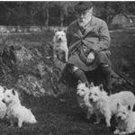 white-terrier-historia