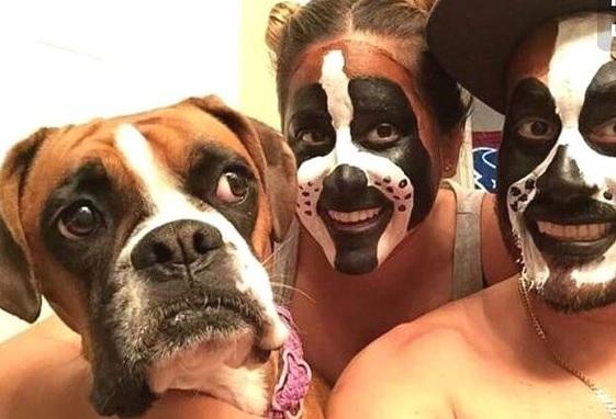 halloween ideias de fantasia para cachorro