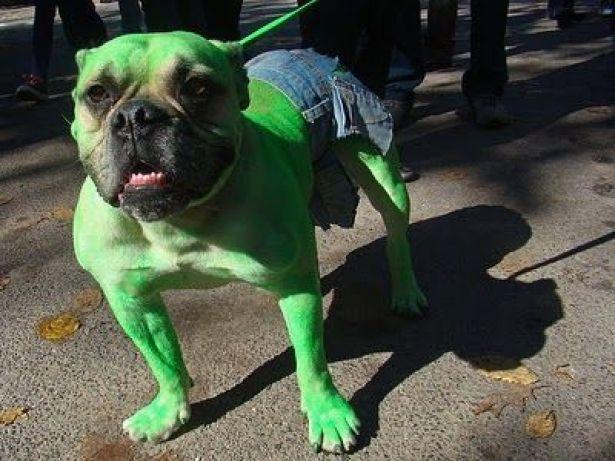 hulk halloween fantasia