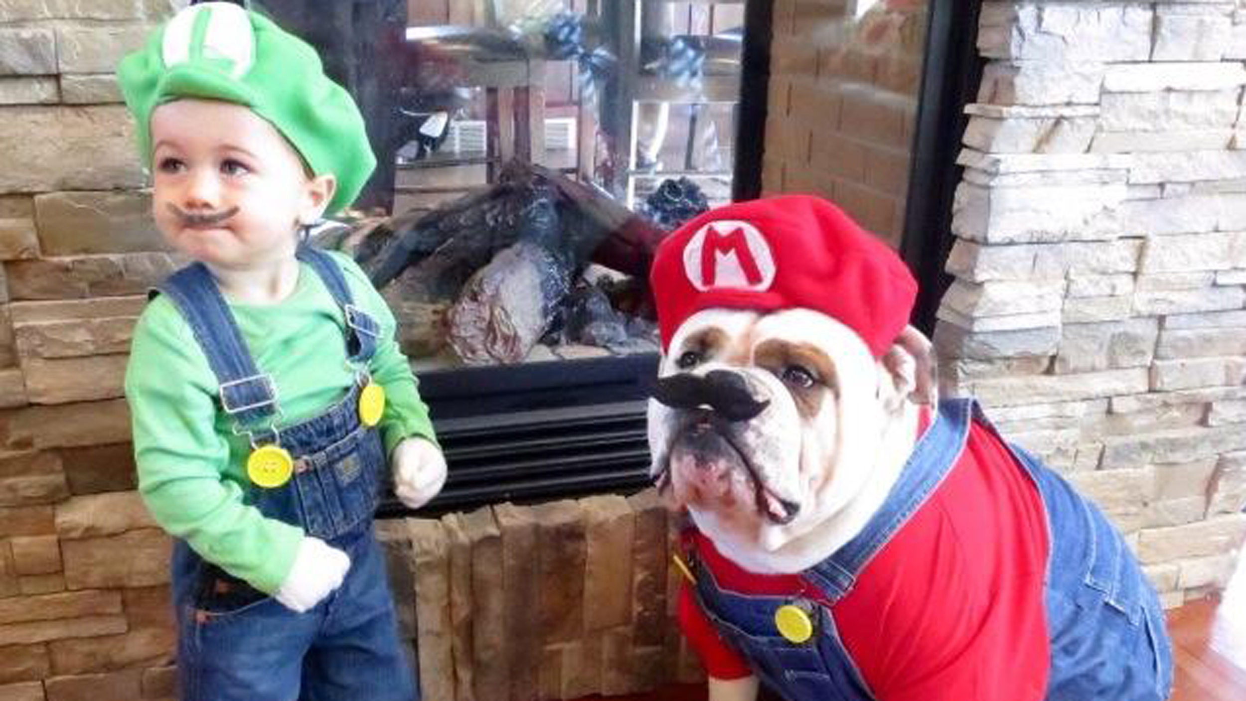 mario-bros-halloween-cachorro