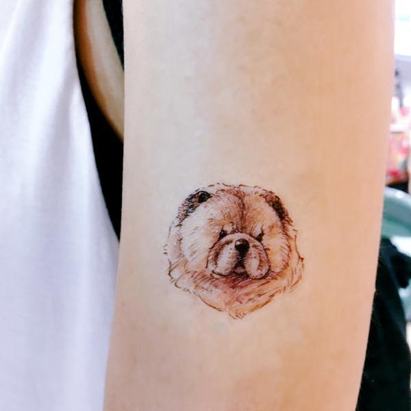 tatuagem de cachorro delicada chow chow