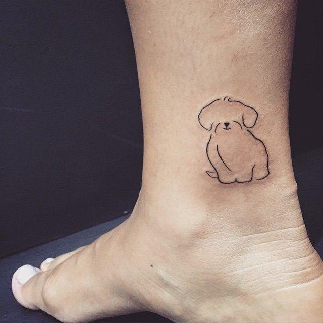 tatuagens de shih-tzu