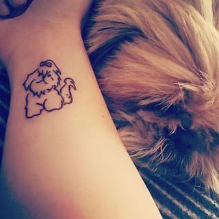 tatutagem-de-shih-tzu