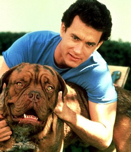tom hanks filme com cachorro