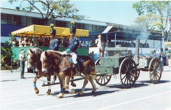 cavalo bretao no Brasil