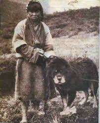 mastim do tibet historia