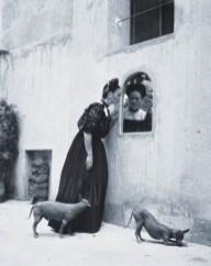 frida - khalo e seus Xoloitzcuintlis