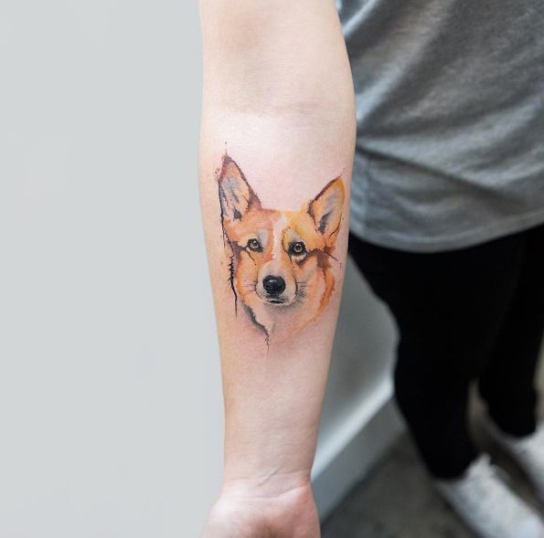 corgi tatuagem cachorro