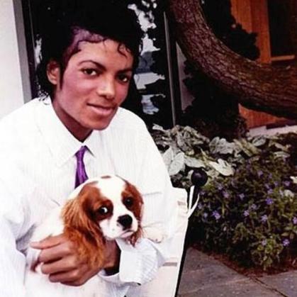 Michael Jackson e um Cavalier Spaniel