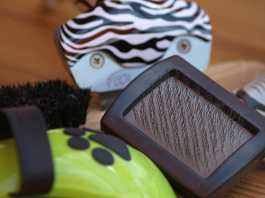 Grooming products for dog