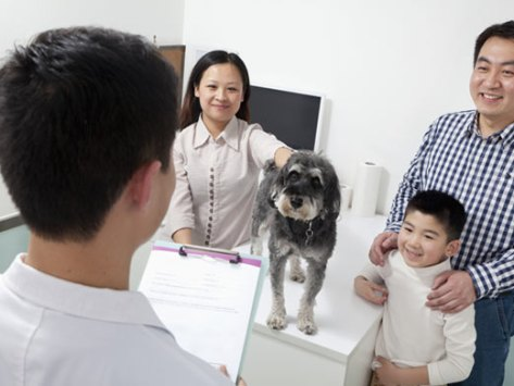 10 Questions Everyone Should Ask Their Veterinarian