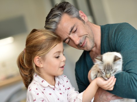 6 Ways to Tell Your Cat Is a Part of the Family
