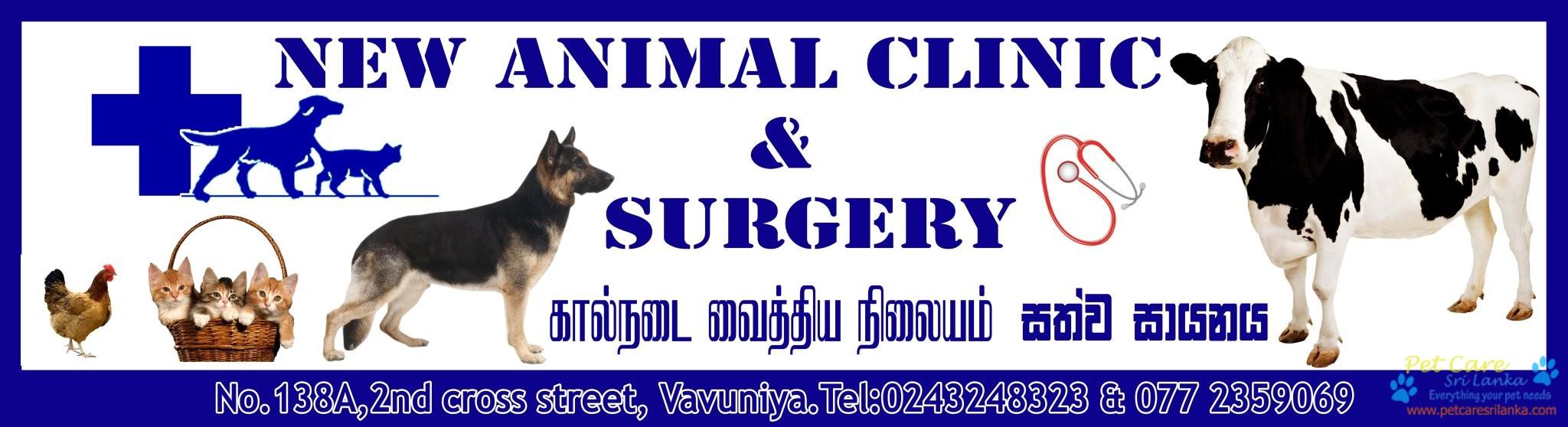 New Animal clinic and Surgery Veterinary Hospital4.jpg