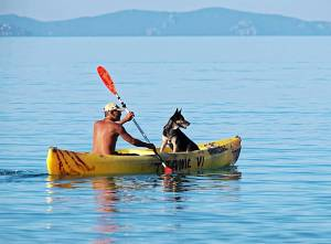 Best-Kayak-for-Dogs