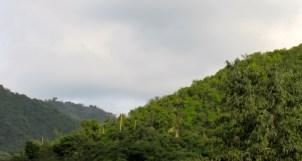 St. Andrew hills.