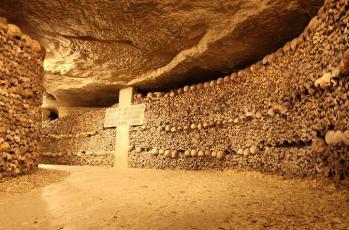 สภาพภายใน Catacombs of Paris รูปจากเน็ต