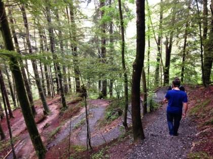 จอดรถในลานจอดรถที่เค้ามีให้แล้วเดินตามทางเดินป่าเล็กๆลัดเลาะลงไปตามเนินเขา