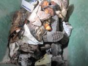 Resíduos-Industriais-Diversos-EPIs-Panos-e-Outros-Triturando