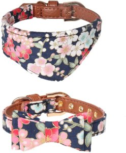 dog collar with bows for cute girls