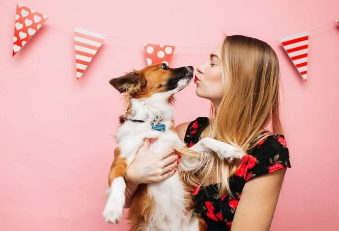 7 Ways to Thow Party For Your Pooch